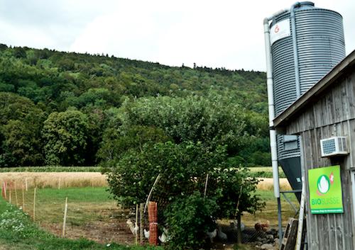 2. BioSuisse farm, Biel, Switzerland, cropped @ Ashish Kothari, Global Education Magazine