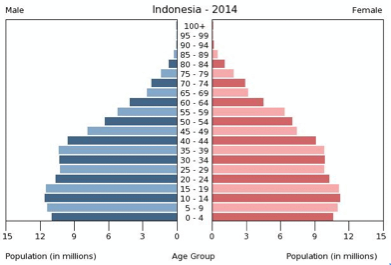 Picture 1. Indonesia Age Structure 2014