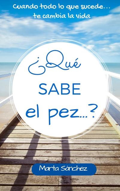 portada QSEP web